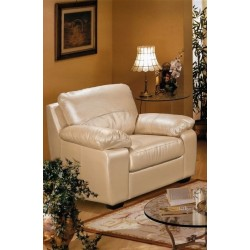 Комбинированное кресло Питсбург